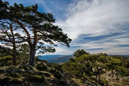 montaña paisaje peñagolosa